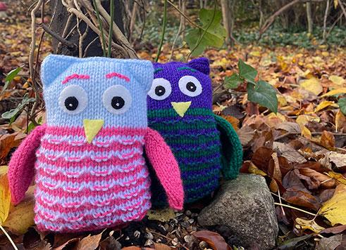 Spot the Owls at Willsbridge Mill